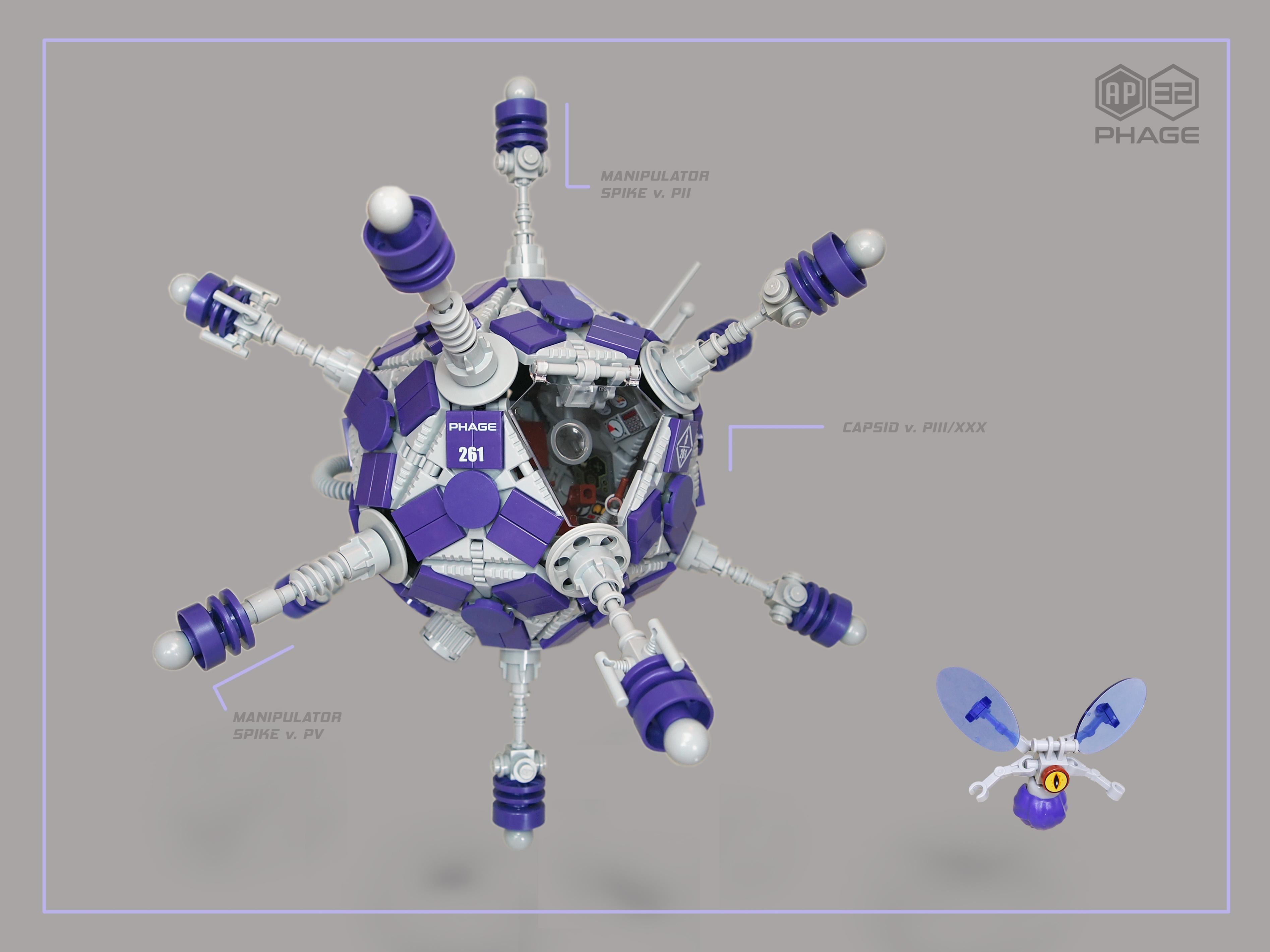 ap-32 phage