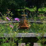 Summer in Miller Park, Preston