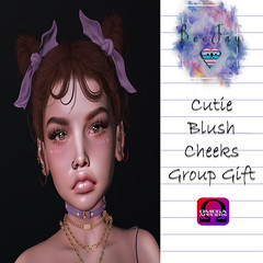 Group Gift Blush Cheeks