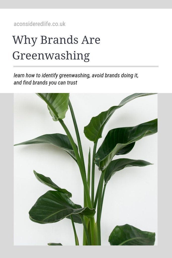Greenwashing: What It Is and How To Avoid It