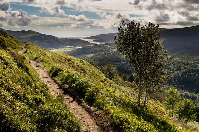 Precipice Walk Path