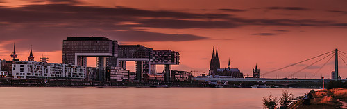Cologne in the evening red