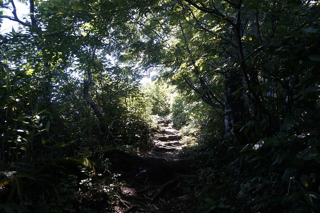 Mt. Sanpouiwadake Attack
