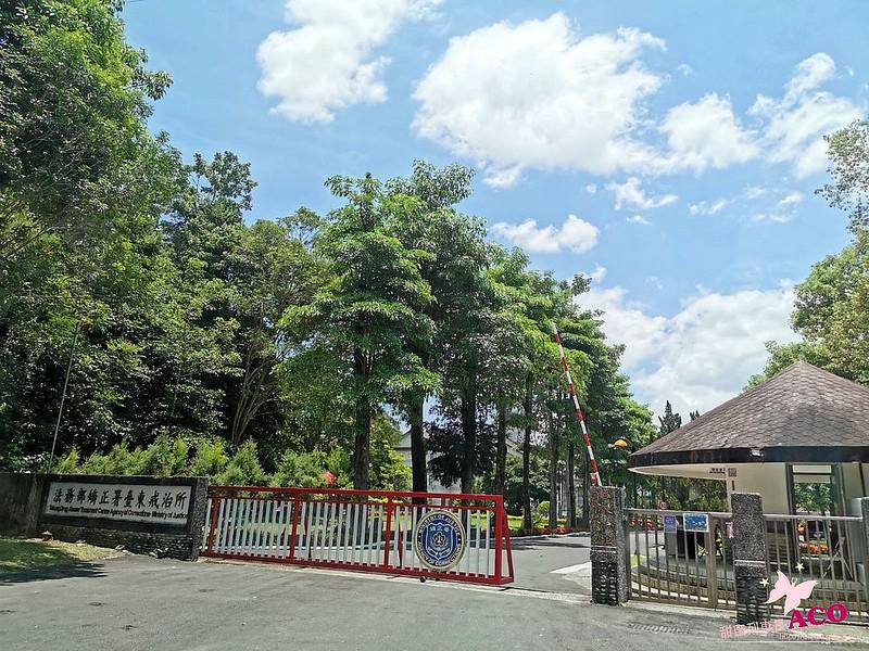 台東一日遊推薦阿吉旅遊39