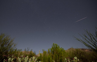 Post-peak Perseid Meteor over Tucson AZ foothills under bright Moonlight