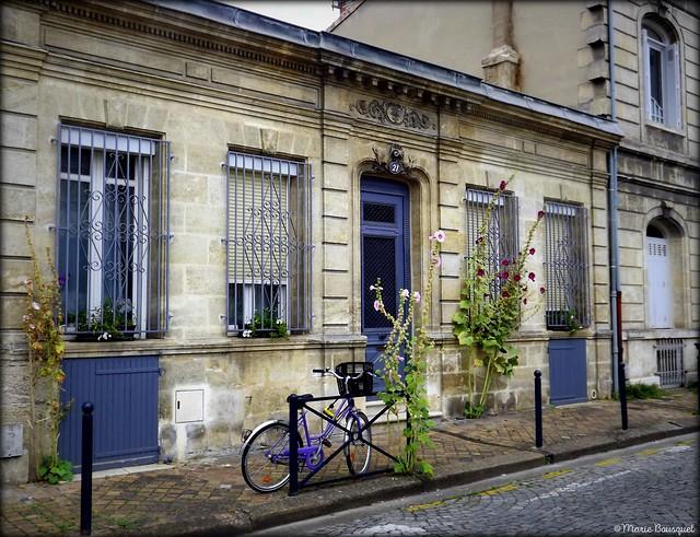 Roses trémières et vélo devant une façade traditionnelle d'échoppe bordelaise