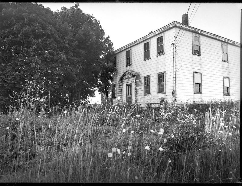 Abandoned homestead, trees, wildflowers, Route 131, Thomaston, Maine, Mamiya 645 Pro, mamiya sekor 45mm f-2.8, 8.10.19