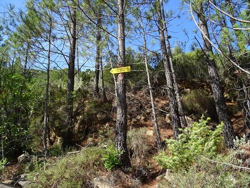 Panneau 120 au départ du Finicione RD (pont de Figa - piste RD de la Sainte-Lucie)