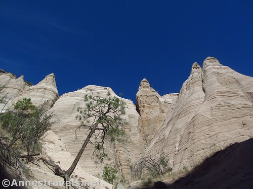 Looking up at the formations while walking up the canyon, Kasha-Katuwe Tent Rocks National Monument, New Mexico