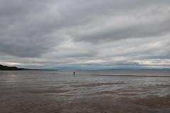 Gullane Bent - August 2019