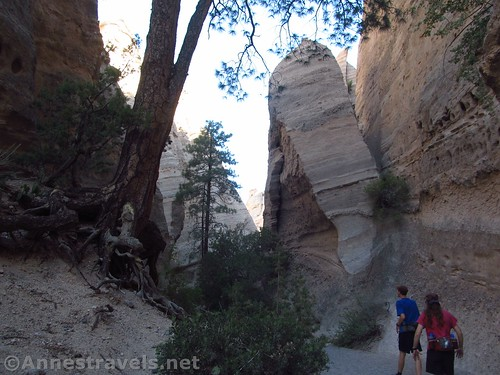 Hiking up the lower part of the canyon, Kasha-Katuwe National Monument, New Mexico