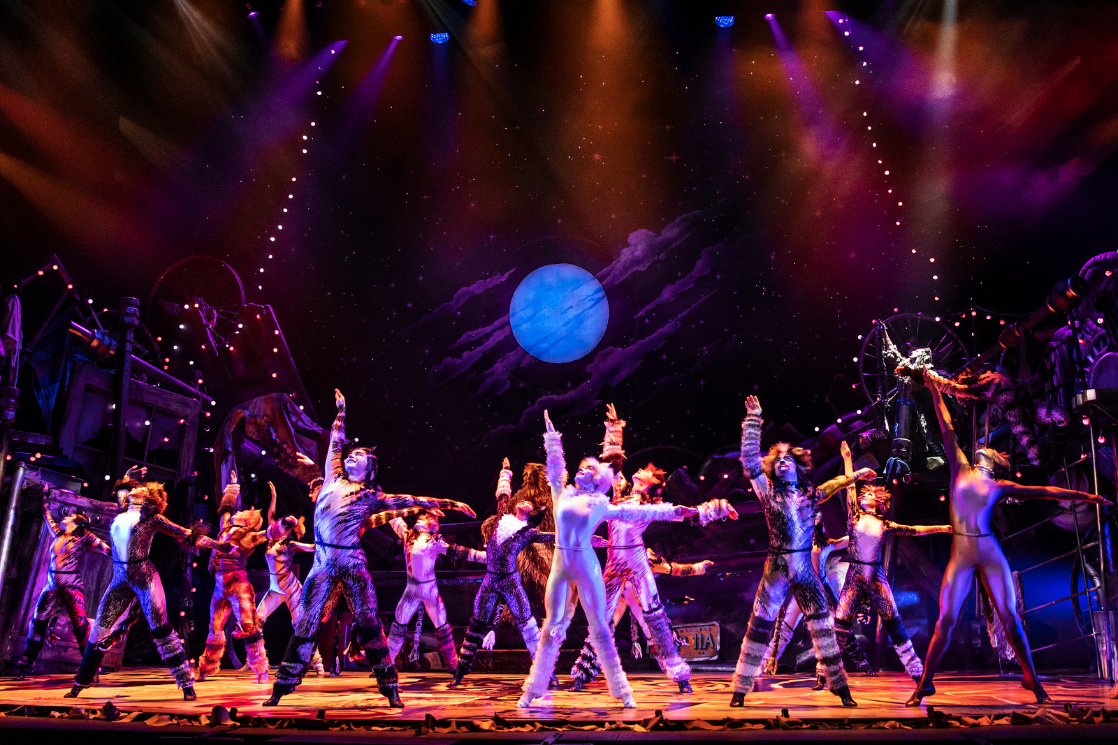 North American Tour Company of CATS. // Photo: Matthew Murphy // Broadway in Detroit: 'CATS' At Detroit's Fisher Theatre September 3-15, 2019