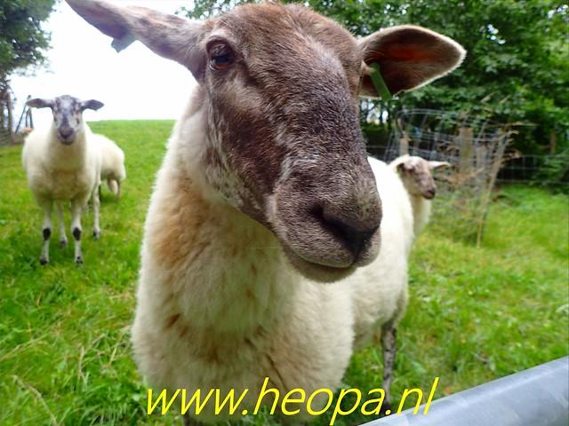 2019-08-10                3e dag                    Heuvelland       30 Km  (67)