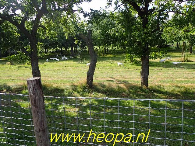 2019-08-10                3e dag                    Heuvelland       30 Km  (40)