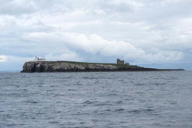 Staple Island