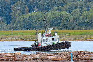 Tugboat Pacific Tyee