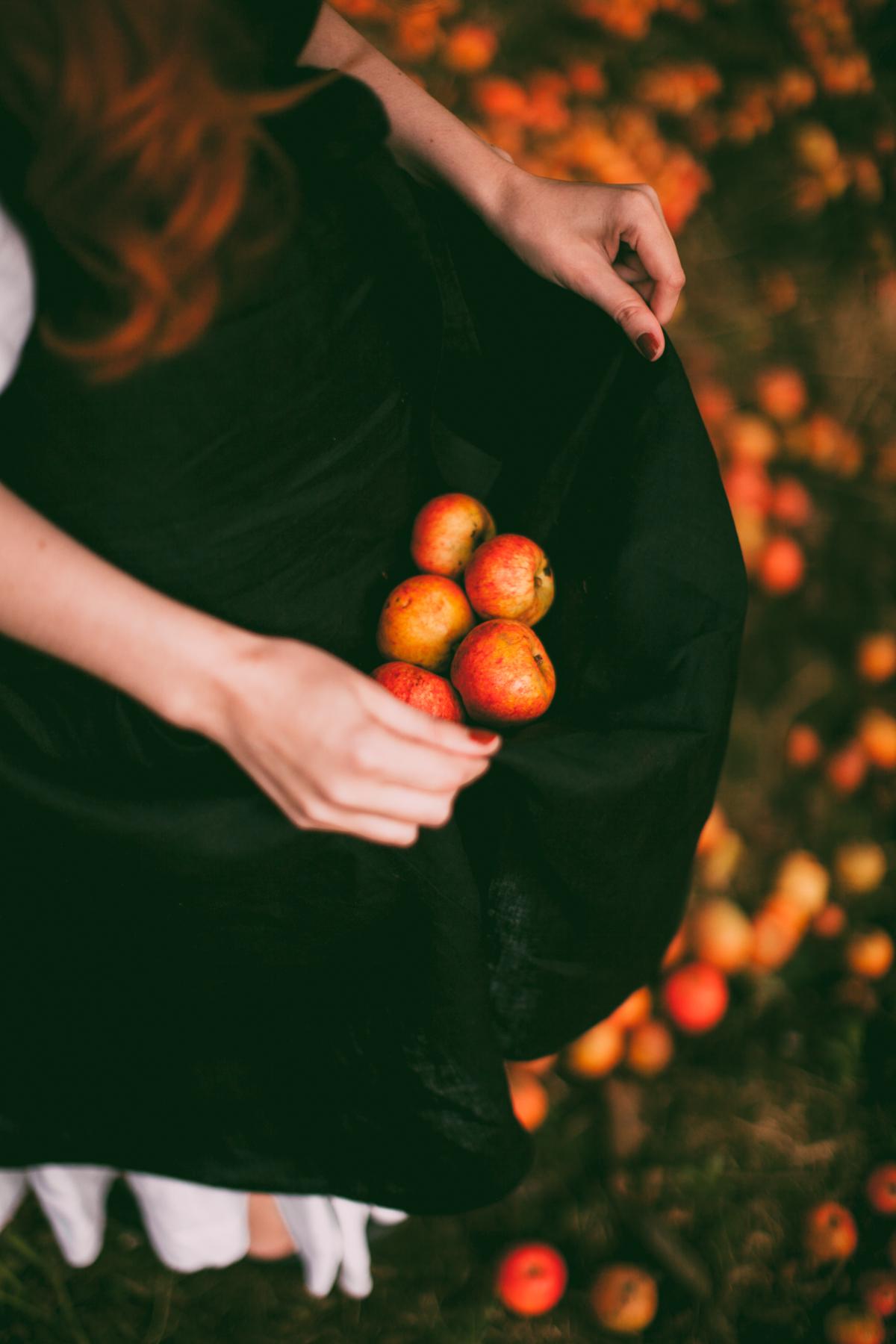tasha tudor orchard-46