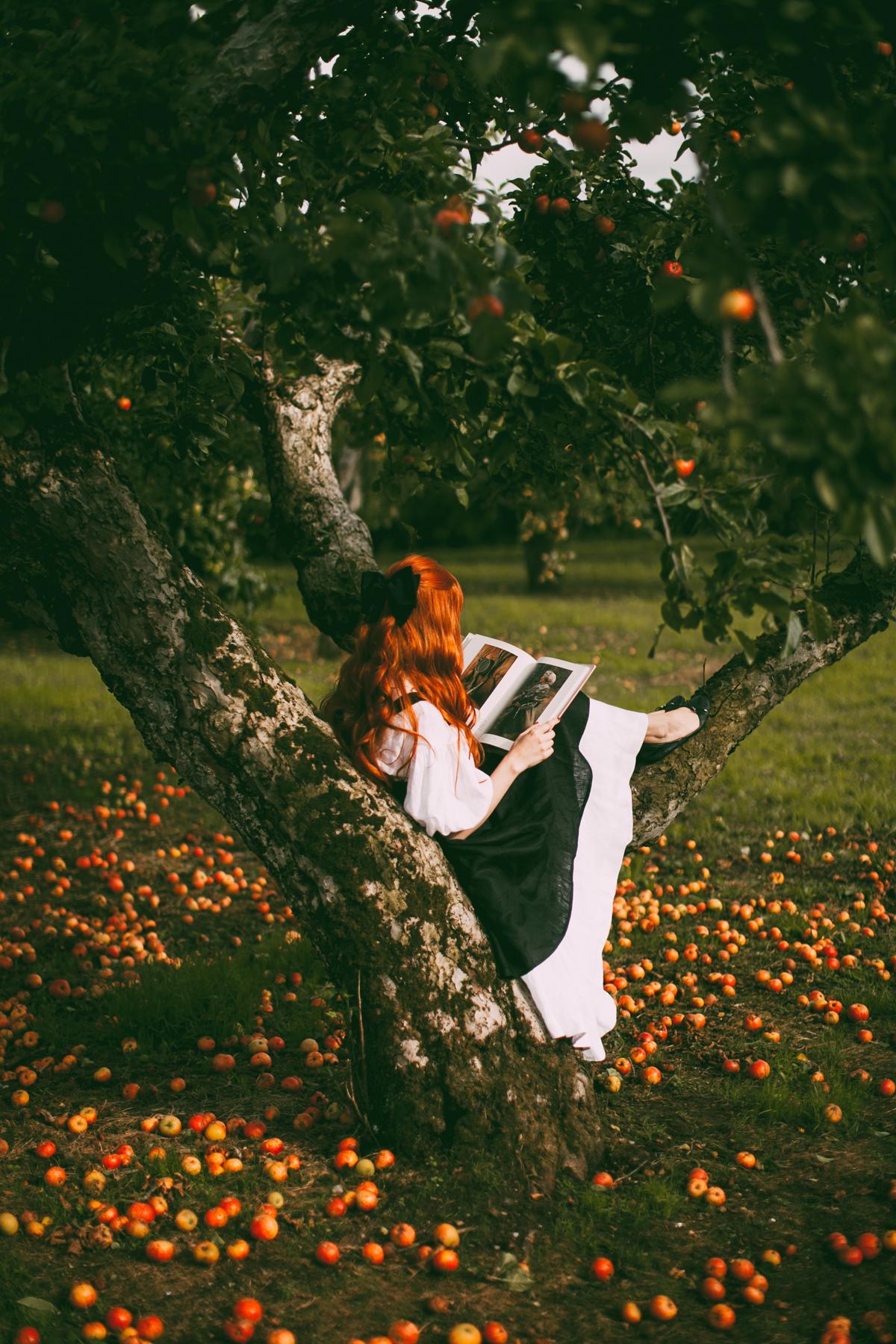 tasha tudor orchard-35