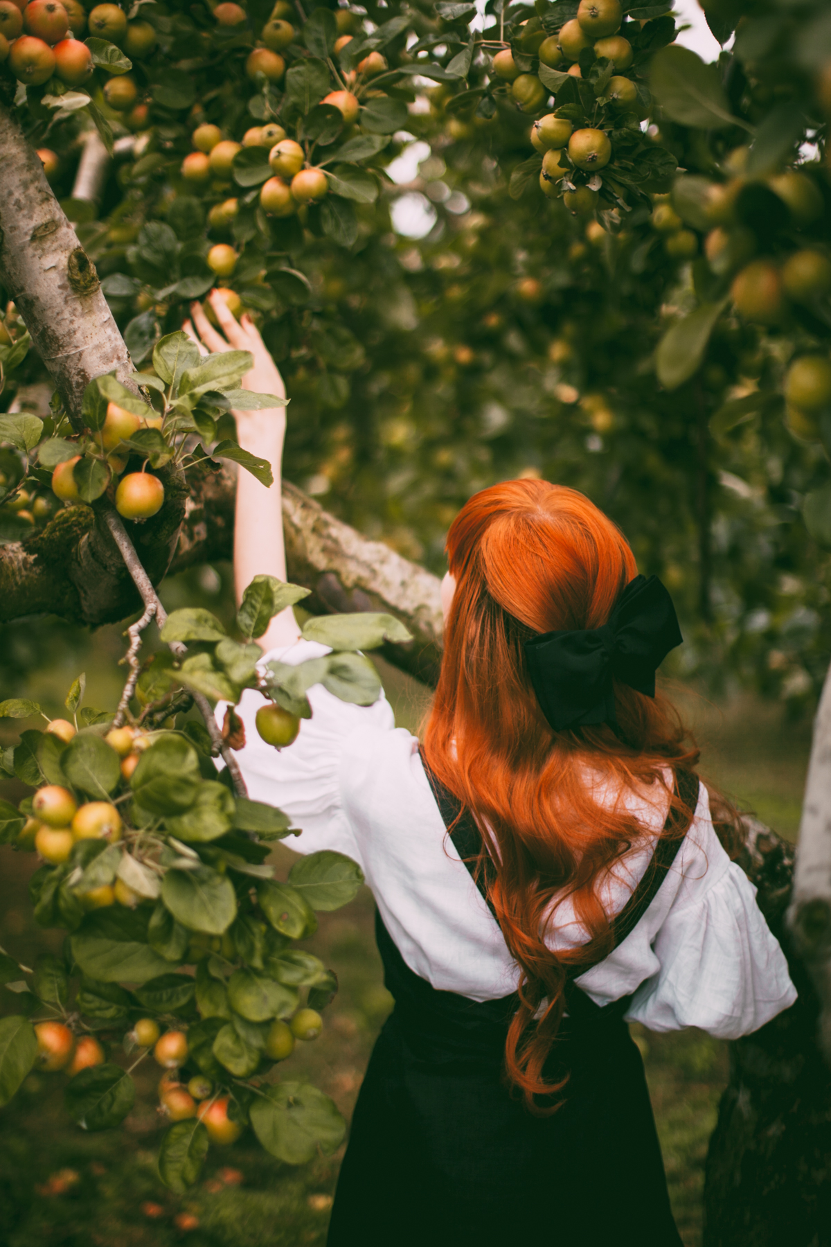 tasha tudor orchard-11