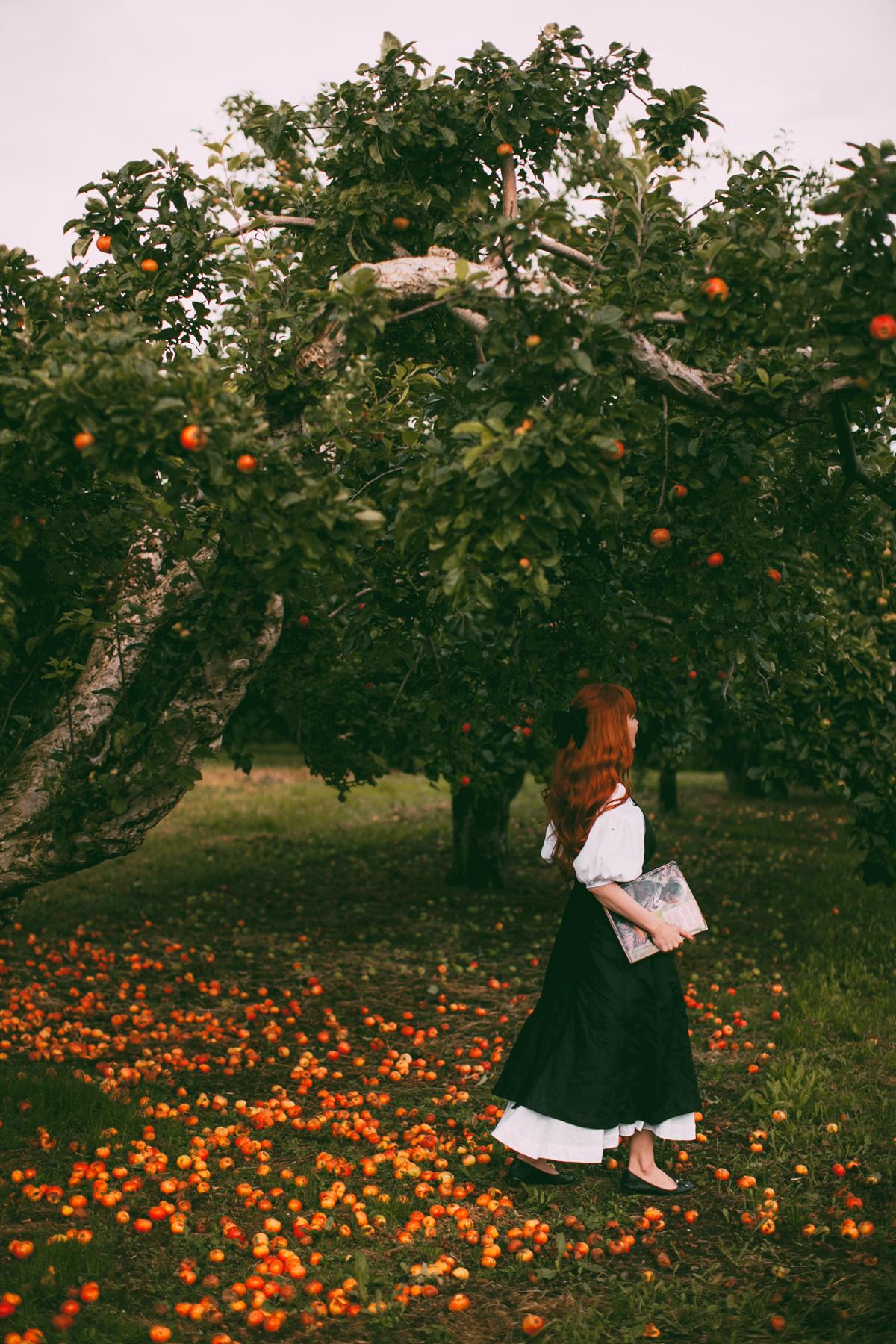 tasha tudor orchard-40