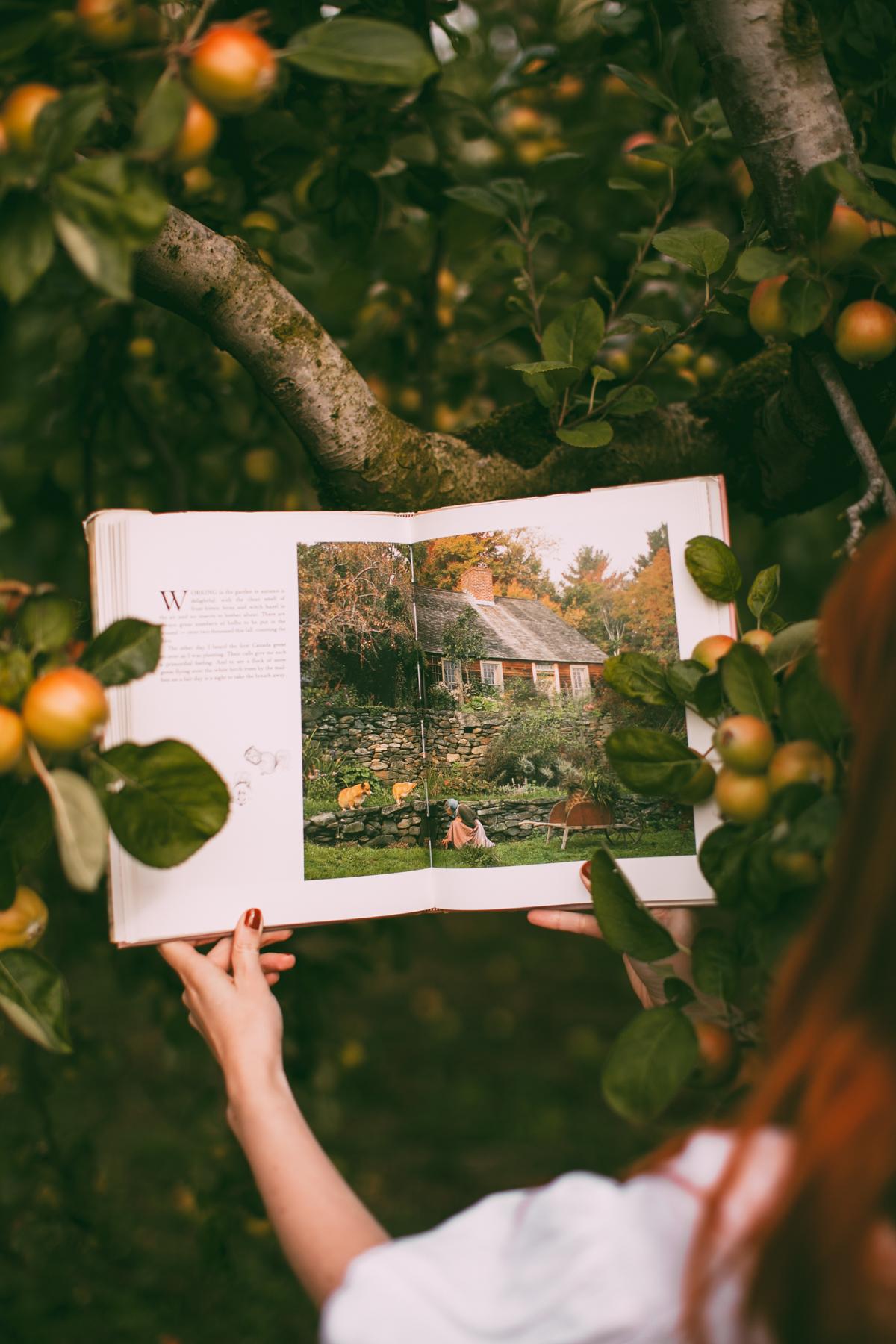 tasha tudor orchard-14
