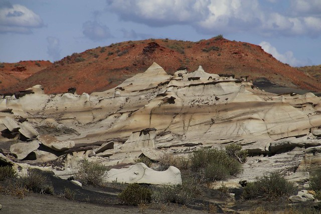 Bisti - it's unbelievable!