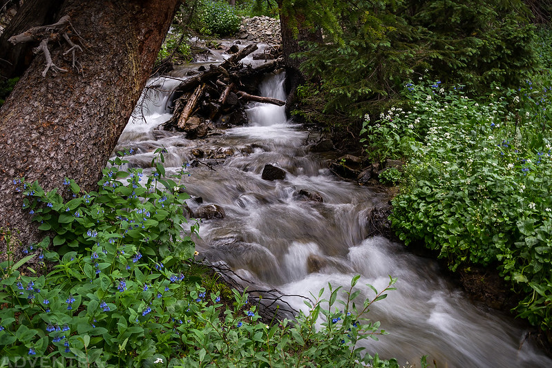 Frenchman Creek Cascade