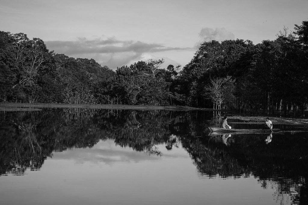 Inkblot   Amazonas   Colombia
