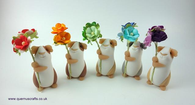 Little Blossom Guinea Pigs