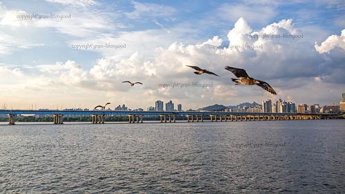Hangang River, Seoul