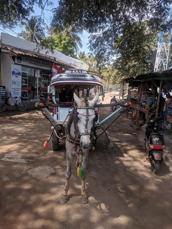 Transporte en caballo en la isla Gili Air
