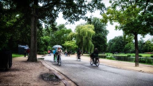 Rainy day in  Vondelpark