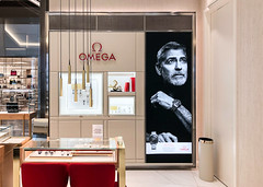 SEG Lightbox Display for Omega