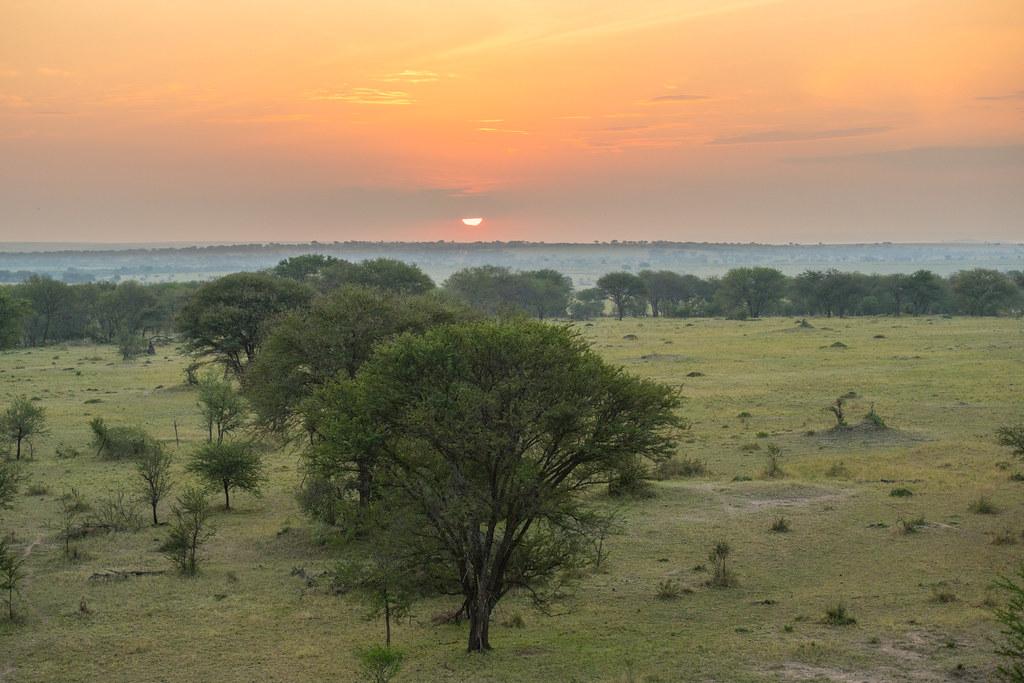 Sunrise from a hot air balloon  - Northern Serengeti