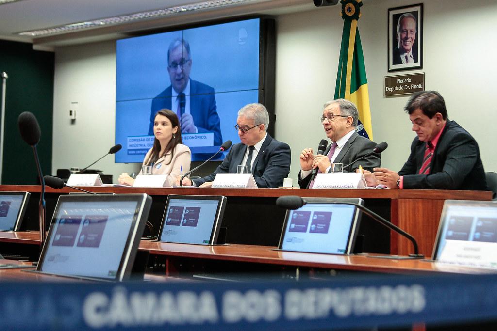 Audiência pública na Comissão de Desenvolvimento Econômico, Indústria, Comércio e Serviços da Câmara dos Deputados