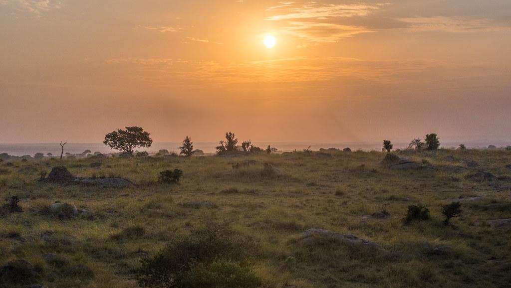 Sunrise - Northern Serengeti