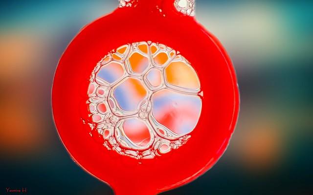 Soap Bubbles - 7247