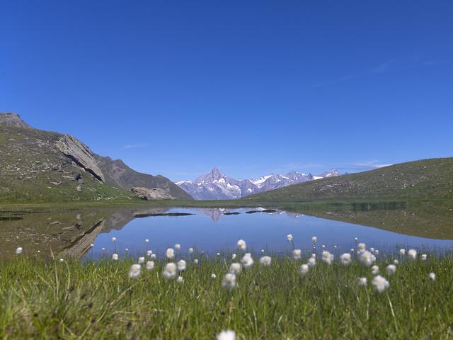 Obers Fulmoos - 2450m - Vallée de Saas