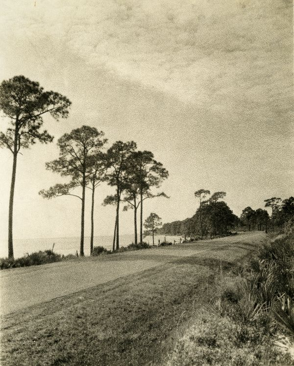 Road running along the Gulf of Mexico near Tallahassee