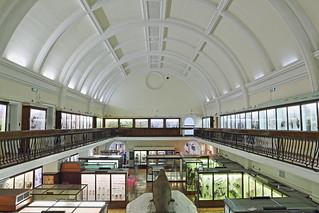 Horniman Museum HDR