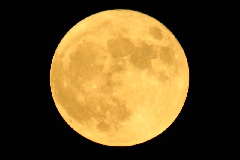 Осетровая Луна