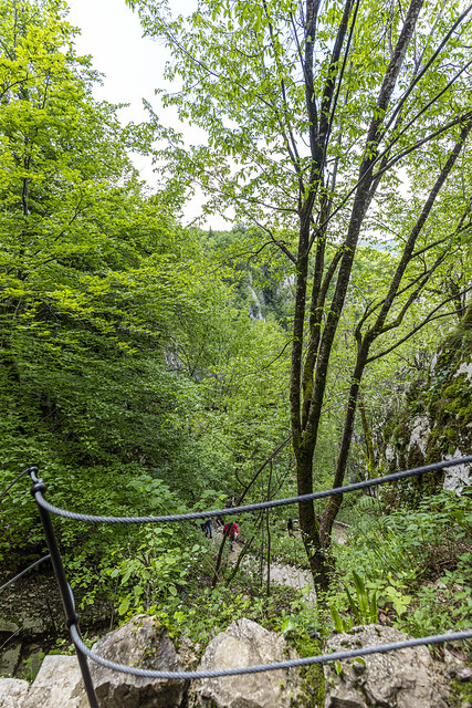 Hacia arriba de la Gran Cascada