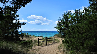 Trail view at the Woollam Family Nature Preserve on Lake Michigan