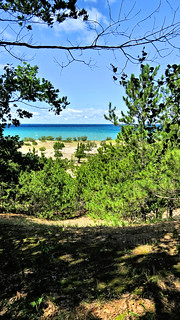 On the trail at the Woollam Family Nature Preserve, Lake Michigan