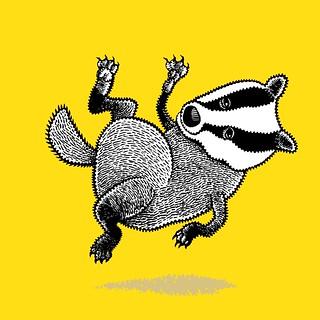 Weightless badger 3