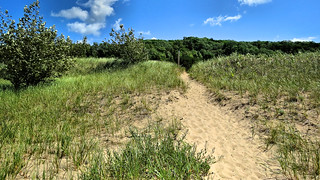 Trail view at the Woollam Family Nature Preserve