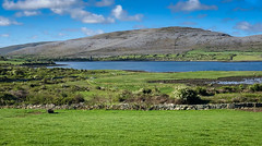 An inlet of Galway Bay at Bellharbour - County Clare Ireland