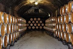Stone Hill cellar
