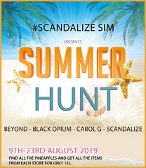 SCANDALIZE SIM SUMMER HUNT