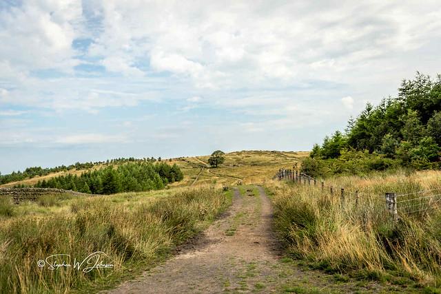 SJ2_1011 - Lancashire countryside